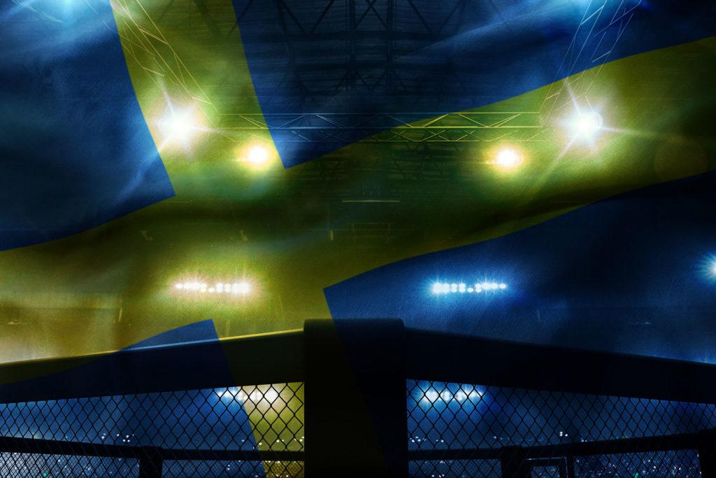 Svenska framgångar i UFC